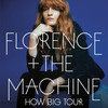 Florence and The Machine Grimes, Xcel Energy Center, Saint Paul
